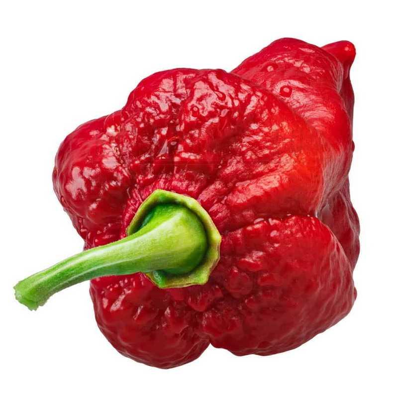 Инфинити перец Infinity Pepper