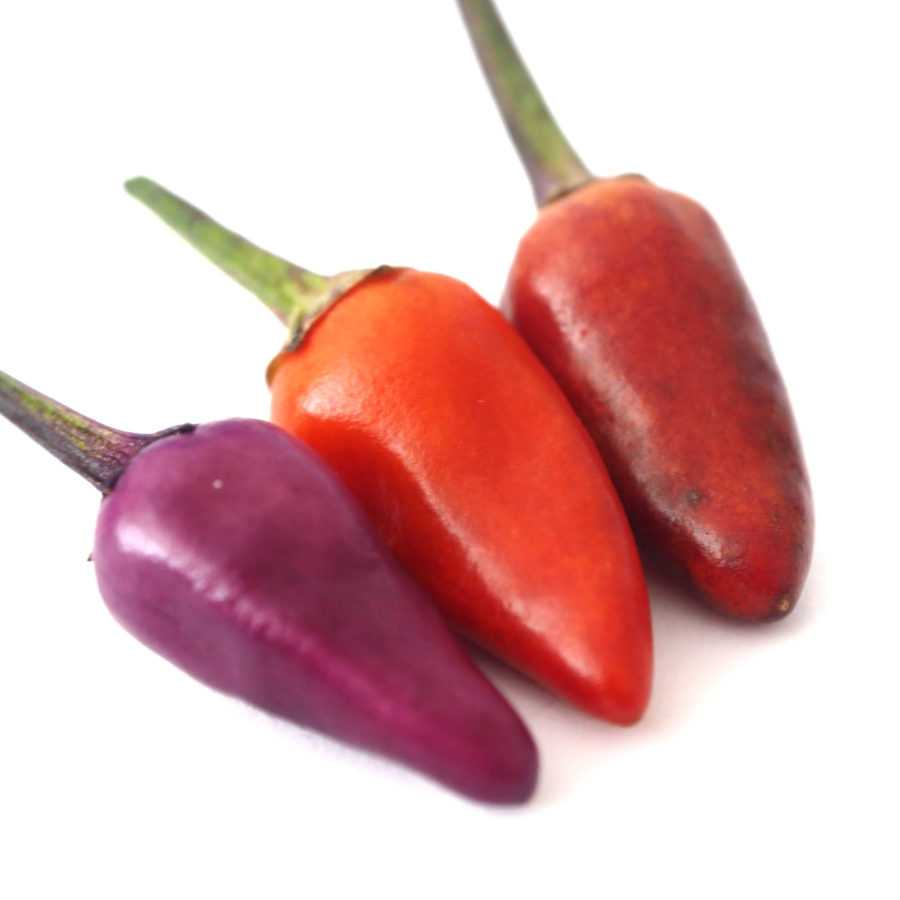 Эксплозив Эмбер Explosive Ember Pepper